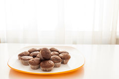 Tasty chocolate muffins in a white plate. Tasty muffins in the plate on the table near to window with natural sun light Stock Photography