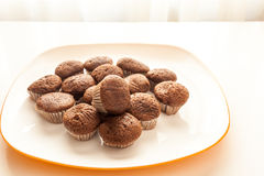 Tasty chocolate muffins in a white plate. Tasty muffins in the plate on the table near to window with natural sun light Royalty Free Stock Photo