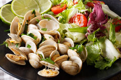 Tasty clam and salad of fresh vegetables close-up. horizontal. Tasty clam and salad of fresh vegetables close-up on a plate. horizontal Royalty Free Stock Image