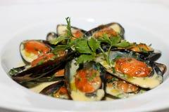Tasty clams royalty free stock photography