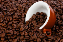 Tasty coffee. Fresh roasted coffee beans with original Italian cappuccino cup Royalty Free Stock Photography