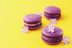 Macaron or macaroon french coockie on yellow background with purple flowers, pastel colors. Flat lay. Food concept. Tasty colorful macaroons in marble Stock Photo