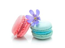Tasty colorful macaroons Royalty Free Stock Photos