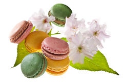 Tasty colorful macaroons Royalty Free Stock Images