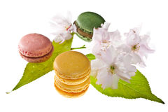 Tasty colorful macaroons Royalty Free Stock Photography