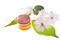 Tasty colorful macaroons Stock Photos