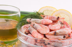 Tasty cooked shrimp Stock Images