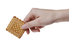 Tasty cookie in woman's hand Stock Photography