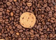 Tasty cookies. Stock Image