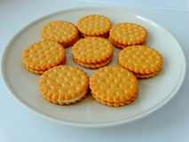 Tasty cookies on a plate. Delicious cookies for breakfast tasty appetite creative Stock Photos