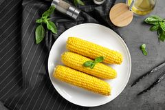 Tasty corn cobs. On plate Stock Images