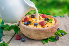Tasty cornflakes with berry fruits and milk in garden Stock Photos