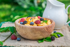 Tasty cornflakes with milk and berry fruits in garden Stock Images
