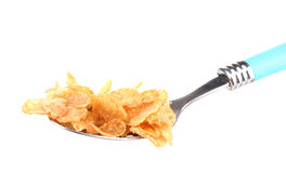 Tasty cornflakes in spoon Royalty Free Stock Photos
