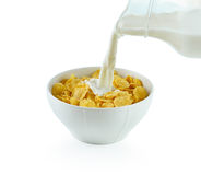 Tasty cornflakes in white  bowl and glass of milk Stock Photography