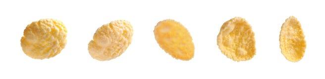 Tasty crunchy corn flakes. On white background stock photography