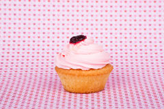 Tasty cupcake on abstract background.  Royalty Free Stock Images