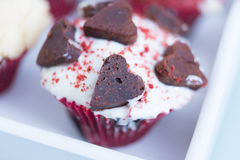 Tasty cupcake with chocolate hearts and cream Royalty Free Stock Photos