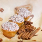 Tasty cupcakes. With cinnamon and anise Stock Photography