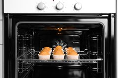 Tasty cupcakes on baking rack Royalty Free Stock Photo