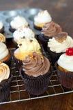 Tasty Cupcakes Royalty Free Stock Photo