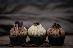 Tasty cupcakes Homemade muffin royalty free stock photo