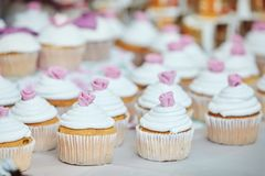 Tasty cupcakes, vanilla cupcakes with pink and white cream stock images