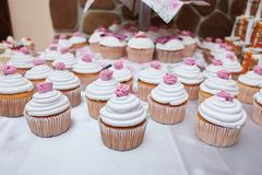 Tasty cupcakes, vanilla cupcakes with pink and white cream royalty free stock photography