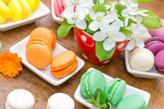 Tasty- delicious french macaroons - macarons Royalty Free Stock Photo