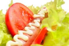 Tasty and delicious hotdog Stock Image