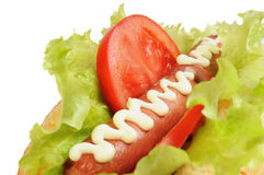 Tasty and delicious hotdog Stock Photography