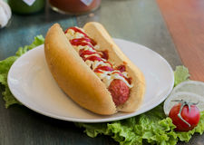 Tasty and delicious hotdog. With herbs Royalty Free Stock Photography