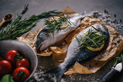 Tasty dorado fish with vegetables and spices Stock Photography
