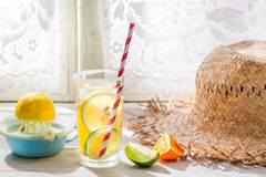 Tasty drink with straw and fruits Royalty Free Stock Photos