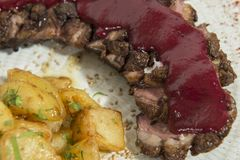 Duck magret with red fruit sauce stock photos
