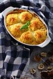 Tasty dumplings stuffed with mushrooms ragout royalty free stock images