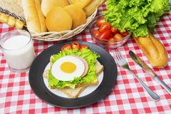 Tasty egg sandwich with milk and assorted breads. Image of tasty egg sandwich served with milk and assorted breads on the dining table Royalty Free Stock Image