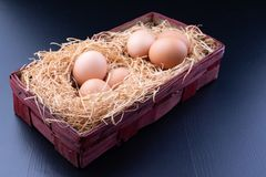 Tasty eggs in a straw bedding. Fresh ingredients for homemade pastries stock photo