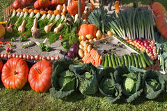 Tasty exhibition. An exhibition of vegetables at rural fair in city Annecy stock images