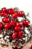 Tasty fancy cake with pomegranate Stock Images