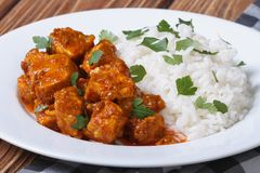 Tasty fillet chicken curry with rice on a plate Stock Photography