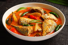Tasty fish curry Royalty Free Stock Image