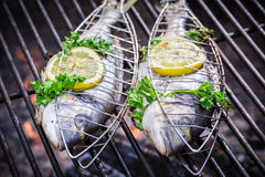 Tasty fish with lemon and herbs for grilling Royalty Free Stock Photo