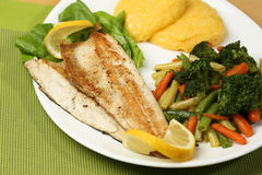 Tasty fish with lemon and vegetables Stock Images