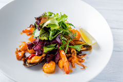 Tasty fish salad with shrimps, baby octopus, herbs, oyster, lemon and sauce Stock Image