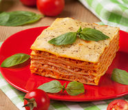 Tasty flavorful lasagna on a plate and ingredients.  Royalty Free Stock Photos