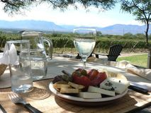 Tasty food: Lunch break in Argentina Vineyard