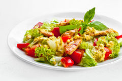 A Tasty food . The salad with roasted chicken . High quality ima Stock Photography