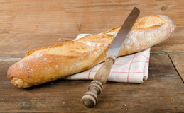 Tasty French baguette Stock Image