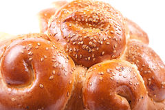 Bun with sesame. Tasty fresh bread with sesame seeds Stock Image